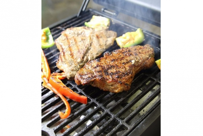 Blackstone Tailgater Gas Grill Review Grill Top 2
